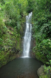 Waterfall in Haleakala National Park Hawaii USA